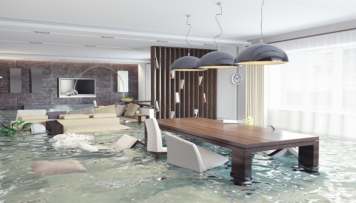 flood damage services